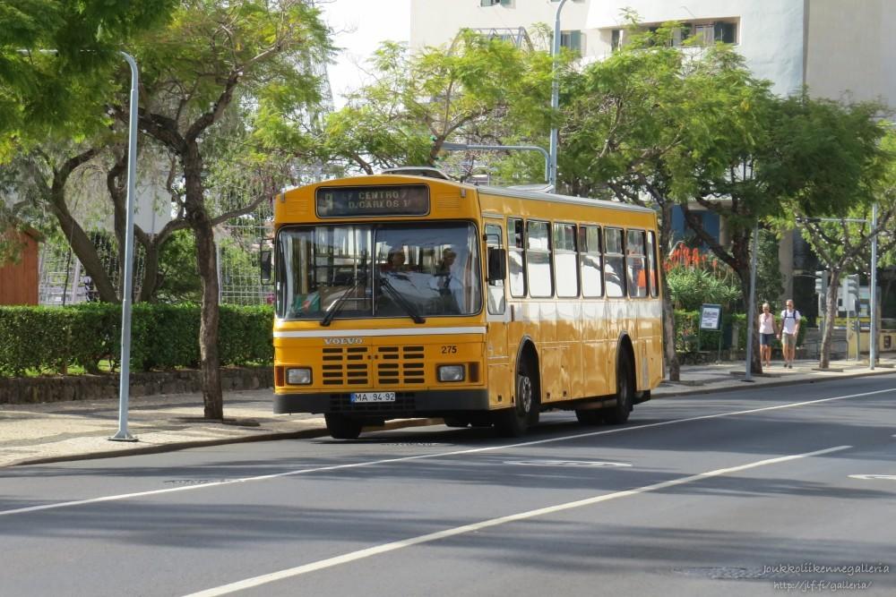 Horarios do Funchal 275